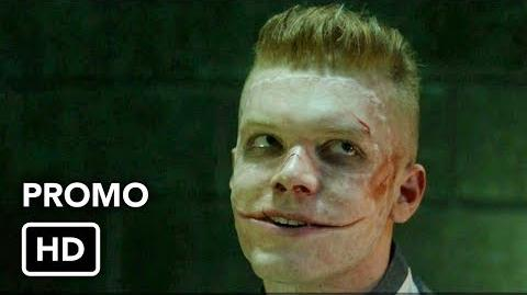 "Gotham 4x12 Promo ""Pieces of a Broken Mirror"" (HD) Season 4 Episode 12 Promo"