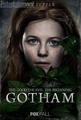 GothamIvyPepper.png