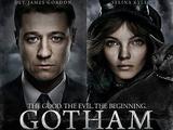 Gotham: Первый сезон