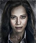 Gotham Renee-Montoya-Portal 03