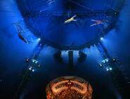 Le cirque Haly