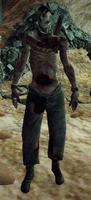 Zapleśniałe Zombie
