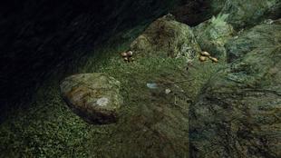 Kamień teleportacyjny do Faring (położenie)