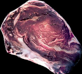 Mięso zębacza
