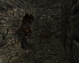 Owca w Górniczej Dolinie (by SpY)