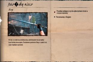 Porządny miecz dziennik