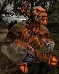Ork-szaman G2