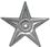Gwiazda-srebrna