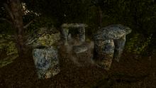Kamienny krąg w wielkim lesie