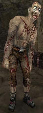 Nadzorca w podstawowej wersji gry