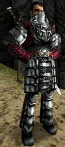 Thorus ER