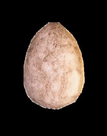 Jajo ścierwojada w Gothic 3
