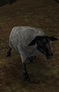 Owca die Bedrohung