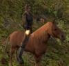 Mag na koniu