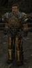Złoty kompan