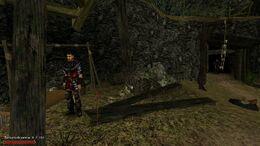 Gothic Edycja rozszerzona 6 (mod)