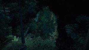 Jaskinia z pochrząkującymi bestiami ukryte wejście