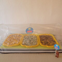 Suszarka z włożonymi tackami i z produktem do wysuszenia