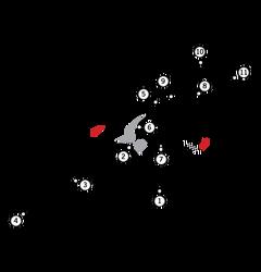 Circuit TI (Aida)
