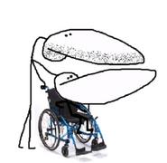 Wheelchairunder