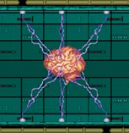 Xaerous Brain AC