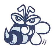 BeeParodiusDa