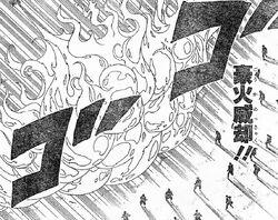 Elemento Fuego-Grán Aniliquilación de Fuego
