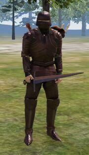 Verum armour