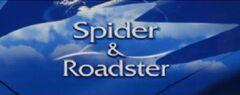 Spider & Roadster