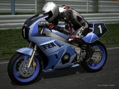 Yamaha FZR400 RM