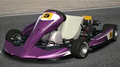 Gran Turismo PDI RACING KART 100