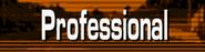 GT2-Professional Level