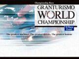 Gran Turismo World Championship (GT3, Professional)