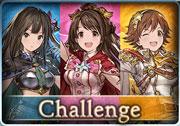 Challenge cinderellafantasy