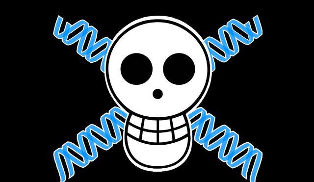 File:Flux Pirates JR.jpg