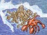 Cecile Reef