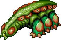 Land Slug
