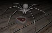 SpiderNewPC