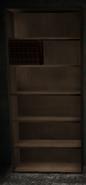 Granny-bookshelf1
