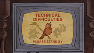 Short14 technical difficulties