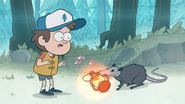 S1e2 possum stealing lantern