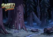 Postcard creator night forest