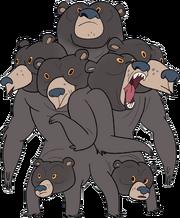 Multi-Bear appearance