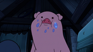 S2e6 waddles after