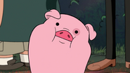 S2e20 waddles doesn't understand