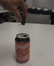 Creation of Pitt Cola