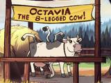 Октавия