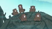 S1e2 beavers