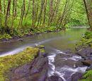 Река Агрель