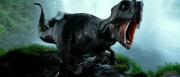 T-aoe psittacosaurus 3